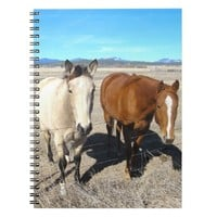 Two Horses Notebook