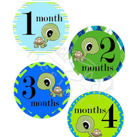 Baby Month Stickers, Monthly Onesuit Stickers, Monthly Baby Sticker, Baby Shower Gifts, Baby Month Sticker Boy, Turtles, B31