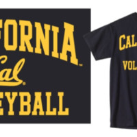 M V Sport Volleyball Tee
