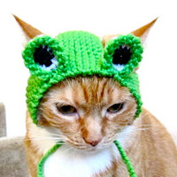 Frog Costume - Cat or Dog