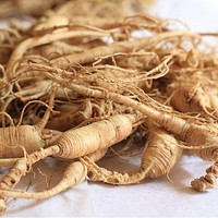 Korean Ginseng Plant Seeds (Panax Ginseng) 15+Seeds