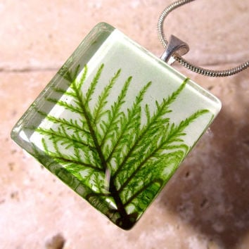 Stair Step Moss (Hylocomium splendens) aka Mountain Fern Moss Necklace, woodland, bryophytes, plant jewellery, nature jewelry, leaf,  green