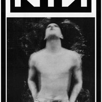 Nine Inch Nails Pretty Hate Machine Poster 11x17