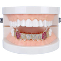 Iced Out Micro Pave Full  Bottom Grillz