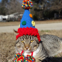 Birthday Party Cat Hat Costume - Cats and Small Dogs - The Party Cat's Birthday Hat