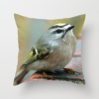 ONCE I HEARD A SONG Throw Pillow by dh   mk photo   Society6