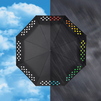 The Color Changing Umbrella