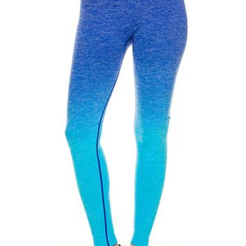 Premium Active Wear Seamless Workout Yoga Ombre Ankle Leggings Tight