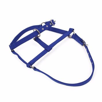 Outdoor Headstall Horse Riding Racing Woven Belts Bridle