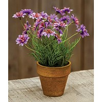 Potted Faux Lavender Daisy Star Plant
