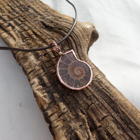 Ammonite Fossil Necklace, Women's Ammonite Necklace, Ammonite Necklace, Ammonite Pendant, Ammonite Fossil Necklace, ColeTaylorDesigns
