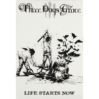 Three Days Grace - Domestic Poster