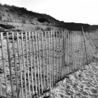 Cape Beach Fence - 11x14 - Photography - Black & White or Color