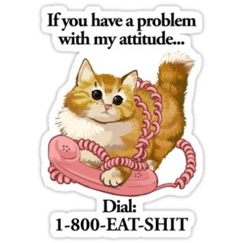 If You Have A Problem With My Attitude