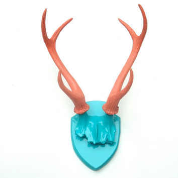 Shop Coral And Turquoise Wall Art On Wanelo