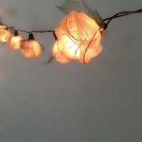 20 natural roses ,Flower Lights, Lamp, White color, Fancy light , Home Decoration, Hanging wall