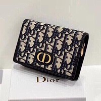 Dior all-match atmospheric multifunctional small wallet clutch bag