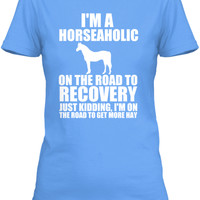 HORSEAHOLIC on the Road To Get More Hay