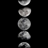 Phases of the Moon Art Print by Eftypography   Society6