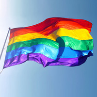 Hot Sale Rainbow Flag 3x5FT 90x150cm Lesbian Gay Pride Polyester LGBT Flag Banner Polyester Colorful Rainbow Flag For Decoration