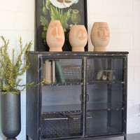 Short Iron and Glass Cabinet