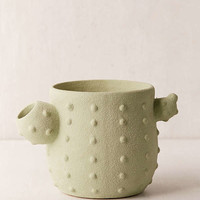 Cactus Planter | Urban Outfitters