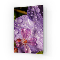 Wet Flower A6 Greeting Card by Mick Agterberg