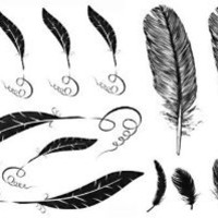 GGSELL 2012 latest new design hot selling Men and women waterproof tattoo sticker feather fake tattoo
