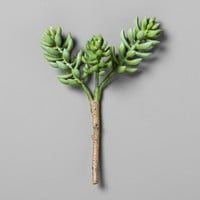 "Succulent Stem (10"") - Hearth & Hand™ with Magnolia"