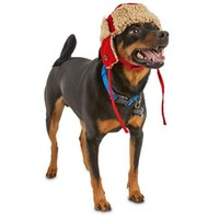 Good2Go Red Trapper Dog Hat | Petco Store