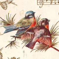 Beautiful Antique Love Song Valentine Greetings Postcard 1908
