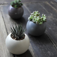 Three Colors Round Ceramic Container -- for water plants, succulents, dried flowers, tea light holder