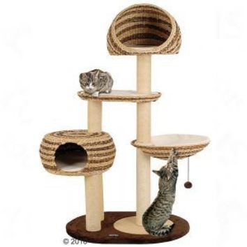 Large Cat Trees: great selection at zooplus: Banana-Leaf Cat Tree Paradise Duo