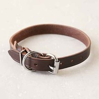 Forager Co. Braided Leather Dog