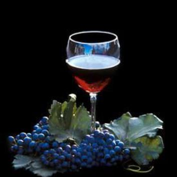 Red Wine and Grapes Photo by Jackie Johnston Fine Art Print