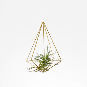 Himmeli Prism no. 2 | Modern Geometric Sculpture | Air Plant Display | Minimalist Home Decor