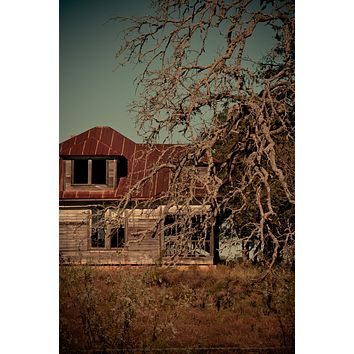 Crinkled : An Abandoned to Grace Wall Art Print