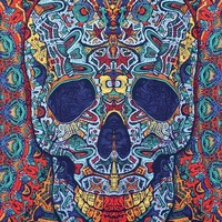 Handmade 100% Cotton Psychedelic 3D Skull Tapestry Tablecloth Bedspread 60x90