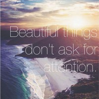 beautiful things don't ask for attention | via Tumblr