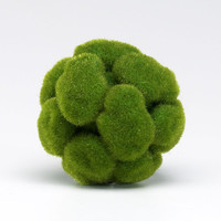 Moss Sphere in Assorted Sizes design by Cyan Design
