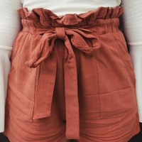Swept Away Shorts: Terracotta