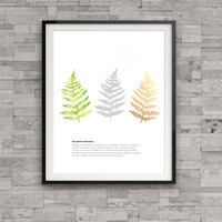 Fern watercolor art print, nature illustration print, botanical art print, leaf print, modern wall art, home wall decor, apartment decor