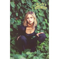 Buffy the Vampire Slayer 1998 Poster 23x35