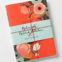 Rifle Paper Co. Sweet Briar Notebooks in Coral Size: One Size Gifts