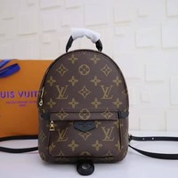 Louis Vuitton Lv Mini Palms Spring Back Pack