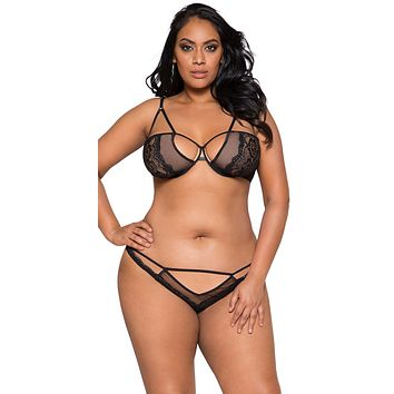 Sexy Ciao Bella Plus Size Sheer Mesh and Lace Cutout Bra and Panty