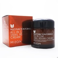 MIZON All In One Snail Repair Cream 75g Face Cream Skin Care