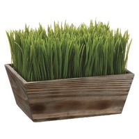 """Grass in Wood Planter - 8""""H x7.75""""D x10.5""""W"""