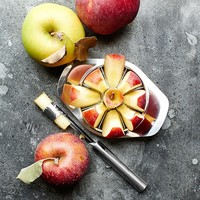 Williams-Sonoma Open Kitchen Stainless-Steel Apple Slicer