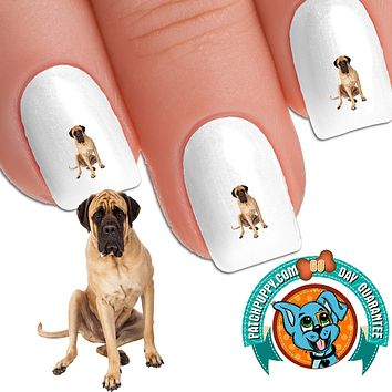 English Mastiff What's for Lunch Nail Art Decals (Now! 50% more FREE)